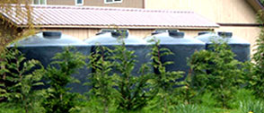 rain-harvesting